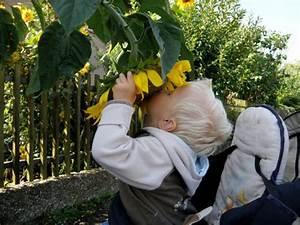 Spiel Im Garten : kindersicherheit im garten ~ Frokenaadalensverden.com Haus und Dekorationen