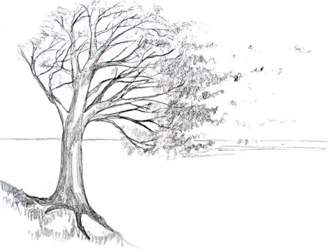 draw  tree happy family art