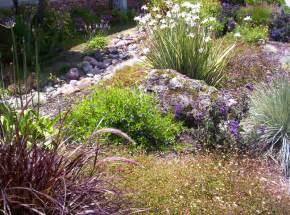 what is xeriscape landscaping xeriscape personal touch landscaping colorado springs co personal touch landscape gardening