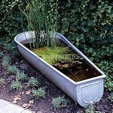 Bildergebnis Für Miniteiche Garten Zinkwanne Water