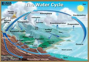 The Water Cycle  Quick Summary  From Usgs Water