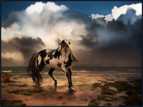 Free Horse Wallpapers For Computer
