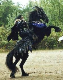 Medieval Destrier War Horse
