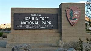 Joshua Tree National Park Ryan Mountain Hike Jessie On