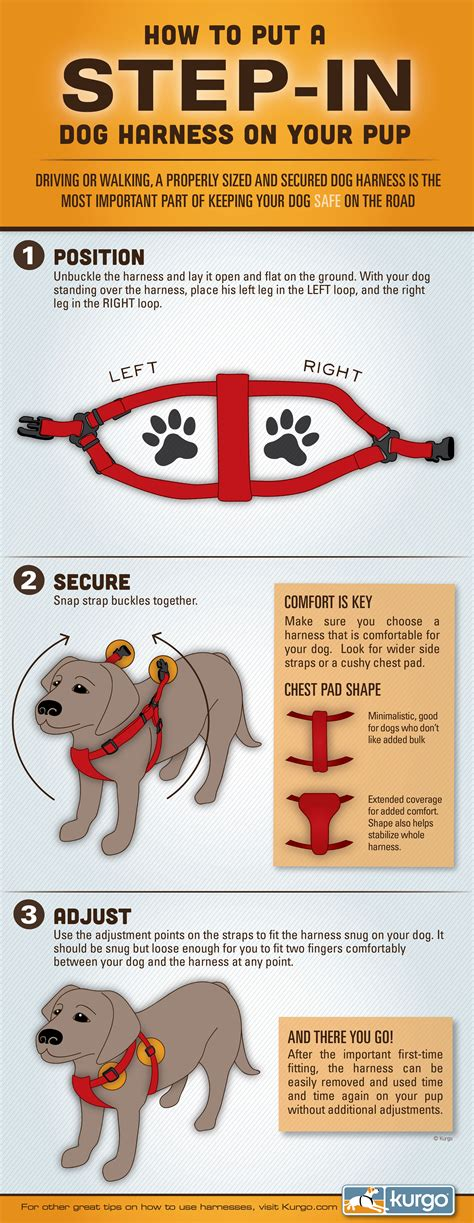 How To Put On A Step In Dog Harness