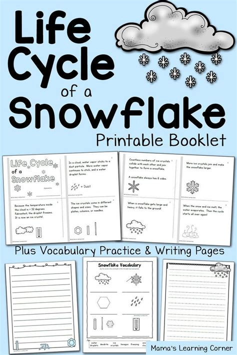 life cycle   snowflake booklet kindergarten science