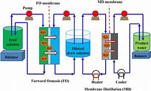 Schematic Diagram Of The Integrated Fo U2013md System