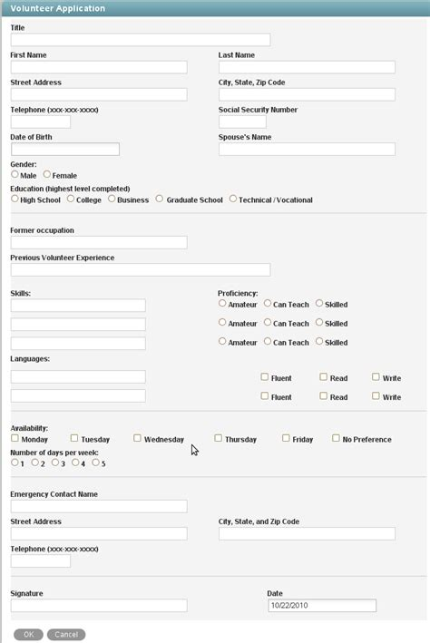 Easy Application by Volunteer Application Vibe Micro Focus