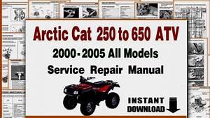 Arctic Cat 250 Engine Diagram  U2022 Downloaddescargar Com