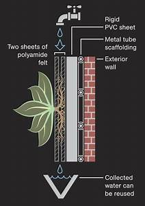 Diagram For Growing A Green Wall