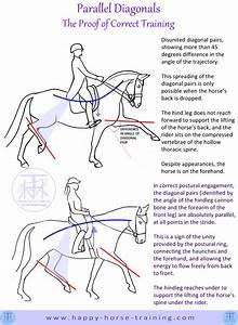 Hht Dressage Diagrams