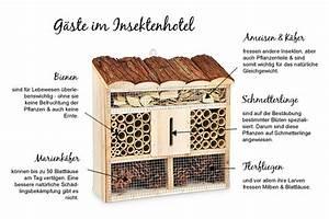 Tiere Im Insektenhotel : insektenhotel und seine g ste ~ Whattoseeinmadrid.com Haus und Dekorationen