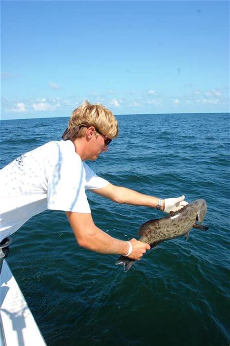 grouper gag releasing