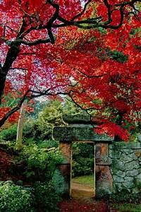 les 25 meilleures idees concernant style de jardin With deco jardin zen exterieur 6 modales du jardin japonais rien nest plus exotique