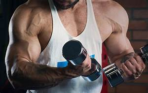The Ultimate Hardgainers Guide To Big Muscles