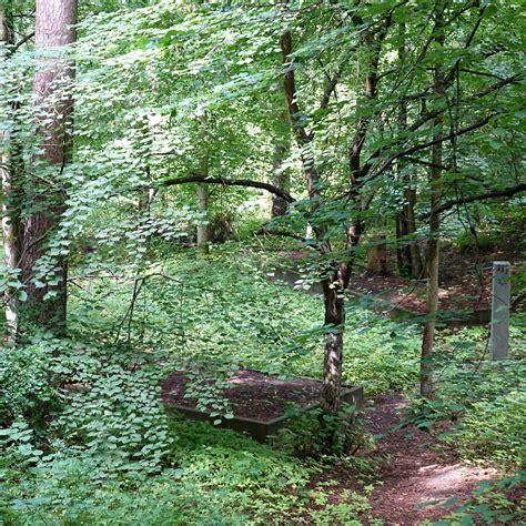 rīgā | latvija | bikernieku mežs | riga | latvia ...