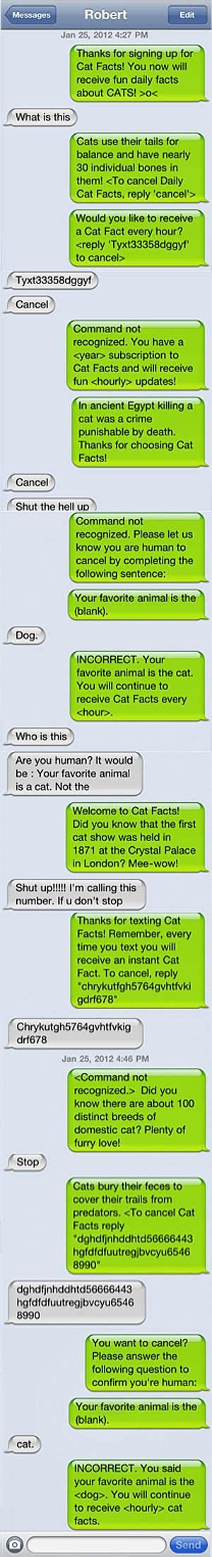 cat facts prank pranks his friend with annoying quot cat facts quot texts