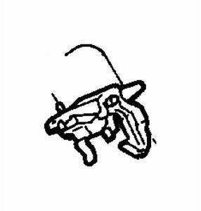 Dodge Dakota Striker  Hood Latch