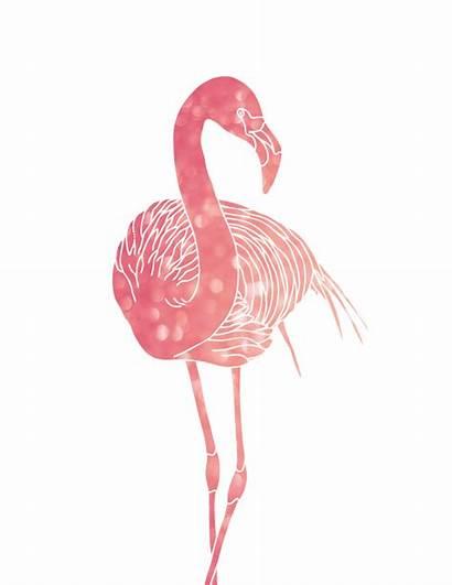 Flamingo Pink Flamingos Printables Drawing Oh Artwork