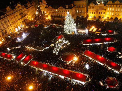 christmas trees   world photo  pictures