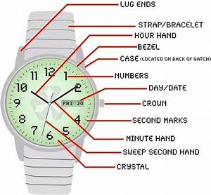 What Are The Different Parts Of A Watch