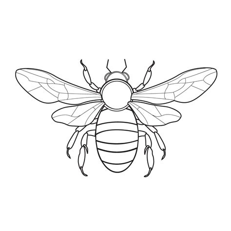 bee coloring pages coloringpages