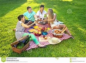 Idée Repas Pique Nic : amis ayant un pique nique image stock image du repas ~ Melissatoandfro.com Idées de Décoration