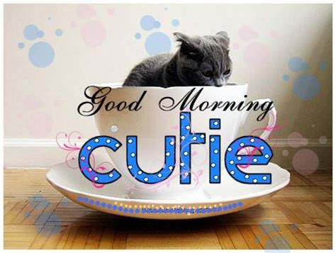 good morning cutie good morning graphics  facebook
