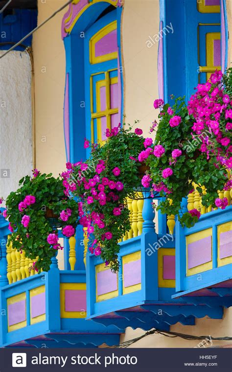 Beautiful Flowers On Colorful Balconies, Filandia Colombia