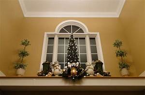 Use the small Christmas tree we have for plant ledge
