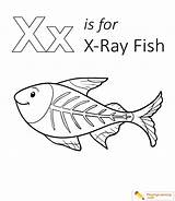 Fish Coloring Xray Pages Letter Ray Preschool Playinglearning Sheet Sheets Rays Crafts Form Worksheets Print Radiation Popular sketch template