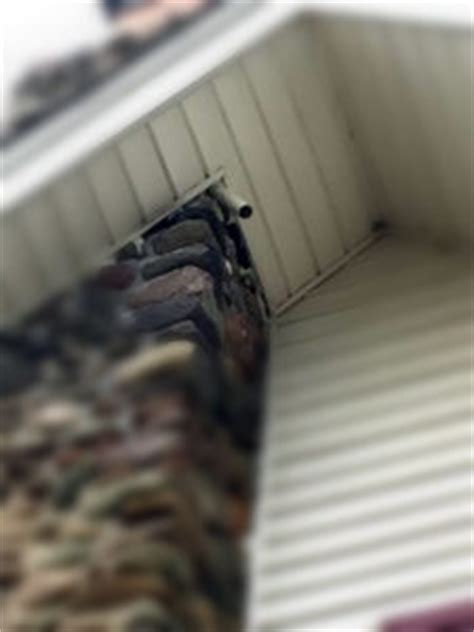 one way bat door get rid of bat droppings on your front porch once and for all