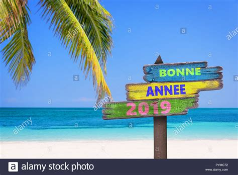 Bonne Annee 2019 (meaning Happy New Year In French) On A