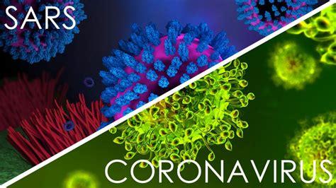 Major SARS Virus Coronavirus