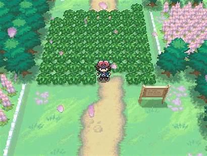 Pokemon Games Seasons Juegos Many Gifs Gaming
