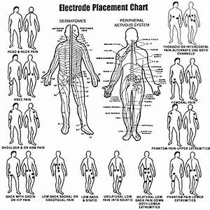 24 Best Images About Tens Unit Placement Charts On