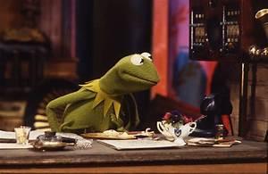 Beauregard | The Muppet Mindset