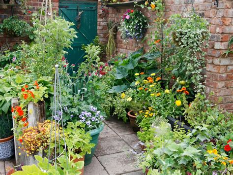 Vegetable Garden With Raised Beds And Containers Growing