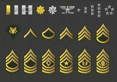 Ranks Army Military Enlisted Vector Illustration Order