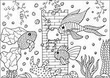 Aquarium Fishes Coloring Tree Plants Aquatic Pages Adults Fins Castle Adult Patterns Three Animals sketch template