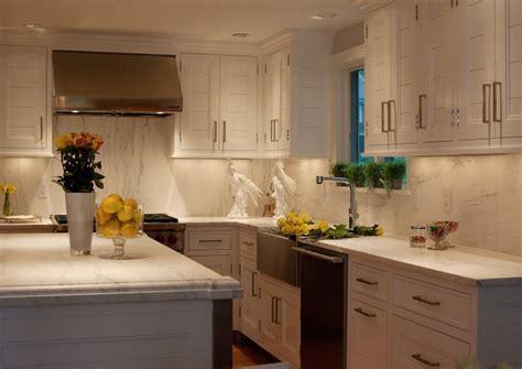 Paneled Kitchen Cabinets   Transitional   kitchen   Marcia