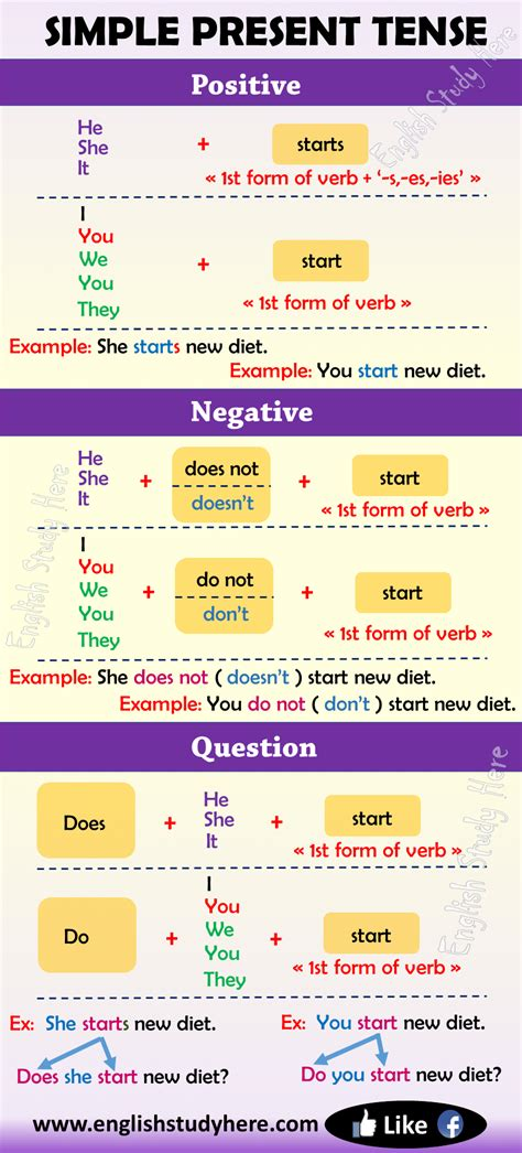 structure  simple present tense archives english study