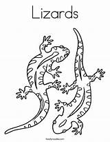 Coloring Lizards Lizard Salamander Built California Usa sketch template