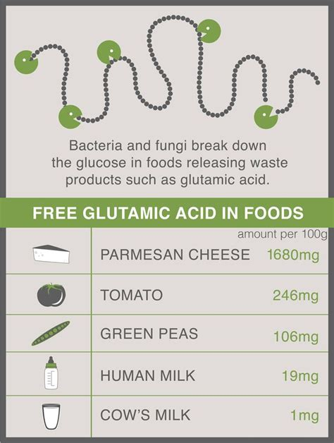 glutamate cuisine 1000 images about reduced free glutamate diet on