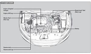 Checking Transmission Oil