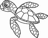 Turtle Coloring Sea Cartoon Hatchling Turtles Drawing Vector Pages Clip Adults Illustrations Clipart Adult Save sketch template
