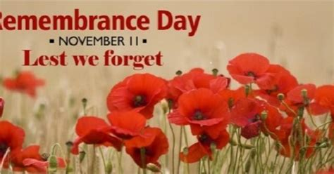 remembrance day wilderness committee
