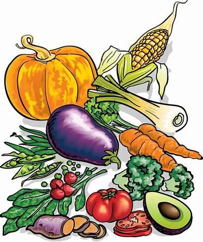 Clipart Clip Vegetables Fruits Vegetable Garden Library