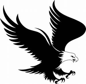 Eagle Eye Logo Design Black And White