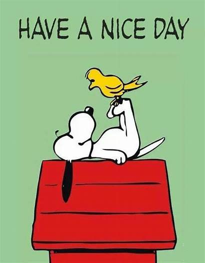 Snoopy Nice Quotes Brown Charlie Funny Peanuts